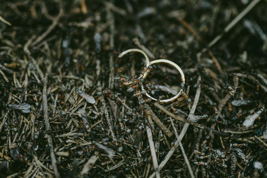 Kadri_Günther_spring_wedding_Mait_Juriado_M&J_Studios-36