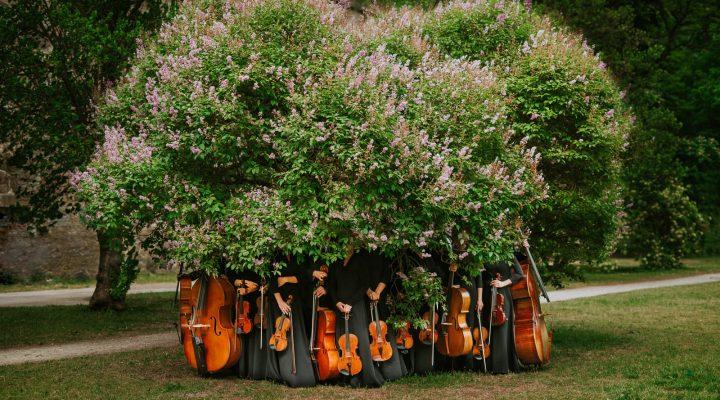 Tallinn-chamber-orchestra-mait-juriado-01