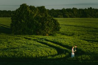 Pruut ja peigmees rohelisel viljapõllul Tallinna lähedal pulmafotograaf Mait Jüriado