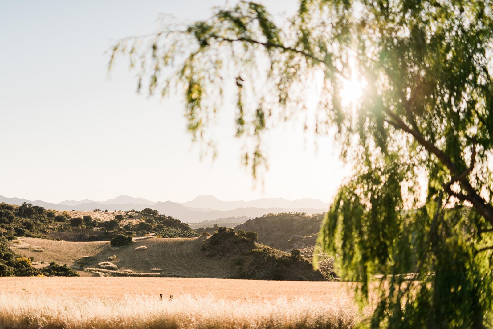 Malaga Ronda Mountain Villa andalucia spain espana wedding photo