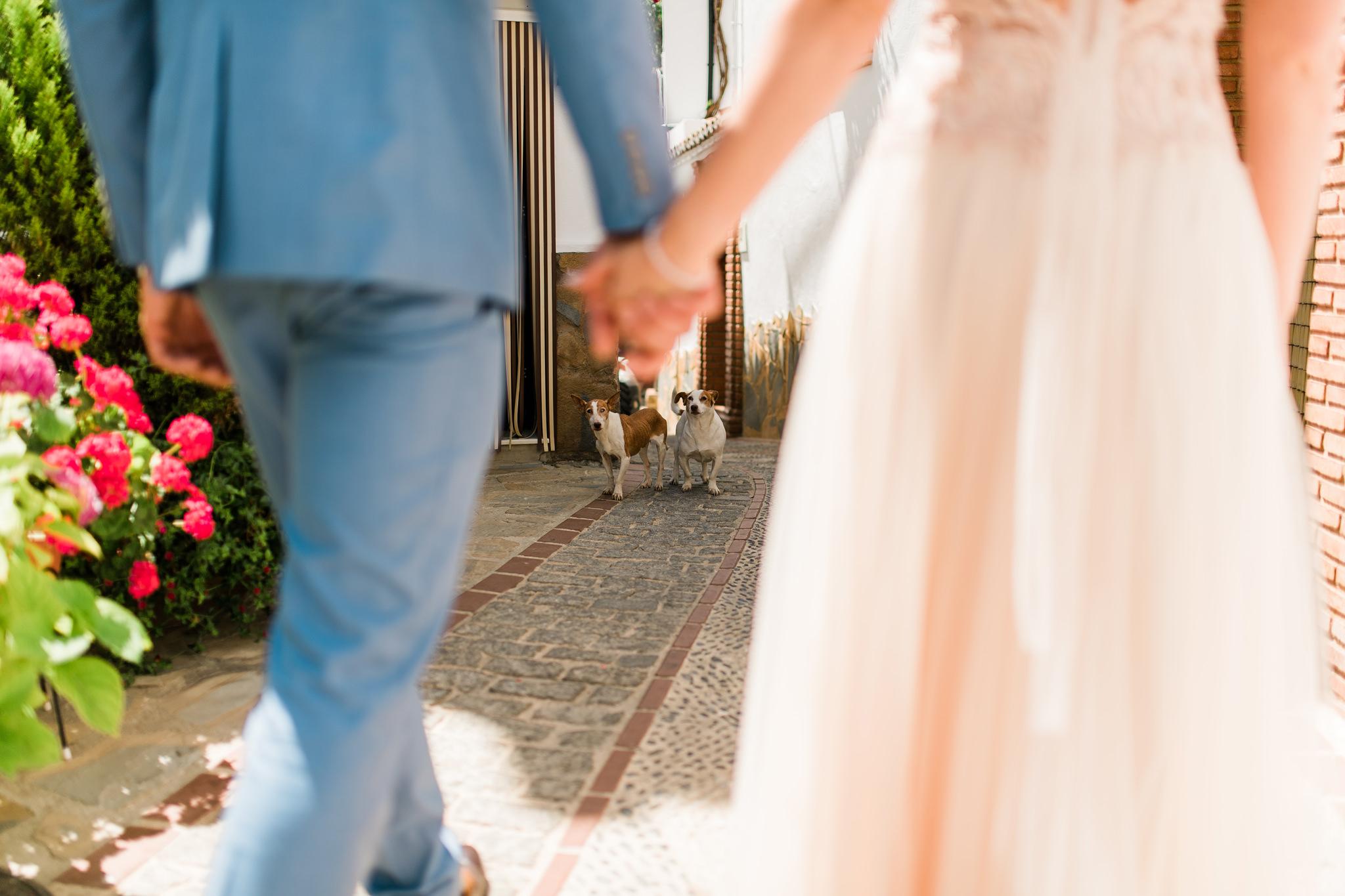 best-wedding-photographer-spain-andalucia-ronda-malaga-mj-studio