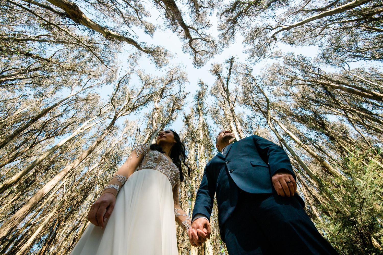 California-san-francisco-wedding-elopement-photographer-lazy-bea