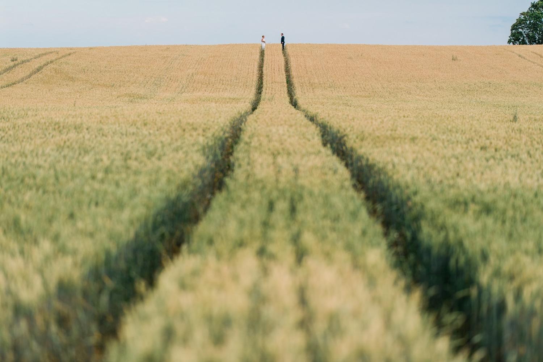 Pruut ja peigmees kuldsel viljapõllul